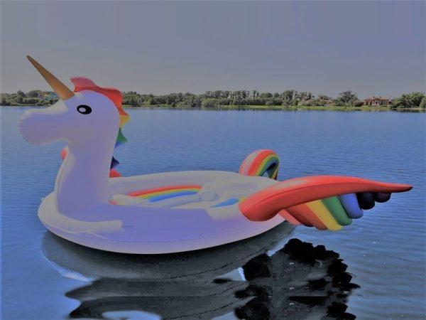 GIant inflatable unicorn chicago