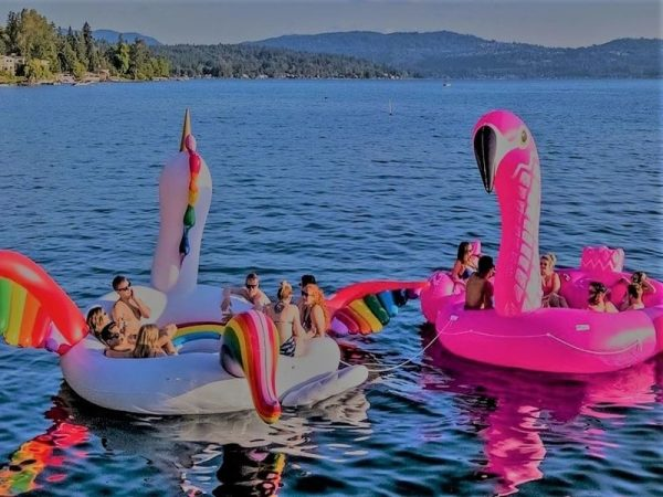 Unicorn Party Bird Island 1