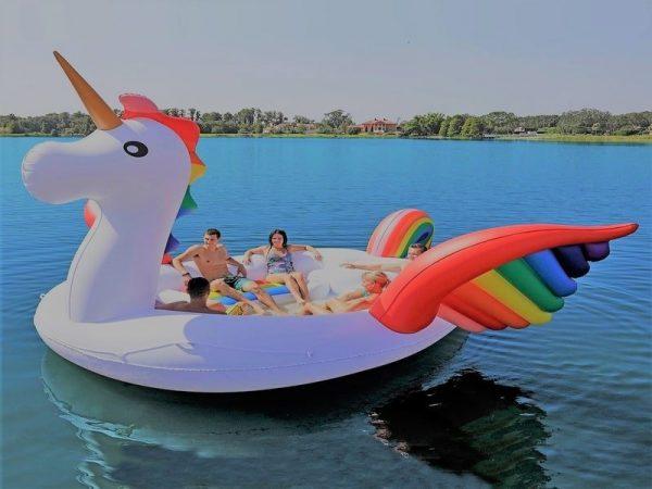 Unicorn party bird island