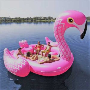 party bird island flamingo
