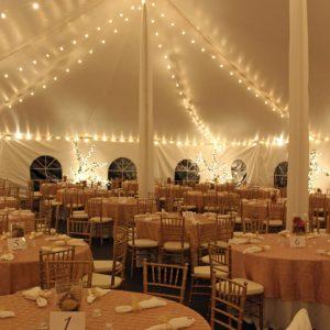 Mini Globe String Lighting - 30 x 150 Tent
